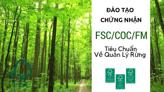 Tiêu chuẩn FSC là gì ? Chứng Nhận bảo vệ rừng FSC/CoC/FM