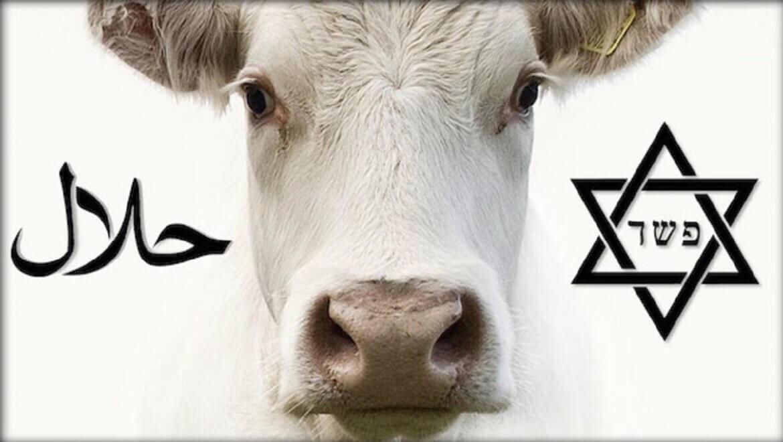 Phân biệt Halal và Kosher