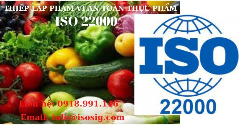 HƯỚNG DẪN THIẾT LẬP PHẠM VI CỦA HỆ THỐNG QUẢN LÝ AN TOÀN THỰC PHẨM THEO TIÊU CHUẨN ISO 22000 CHO CÁC CÔNG TY SẢN XUẤT